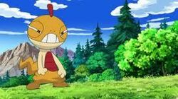 Ash's Scraggy (2)