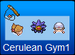 Cerulean Gym 1 Official Icon