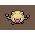 056 elemental dark icon