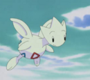 Togetic Misty