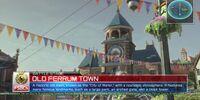 Old Ferrum Town