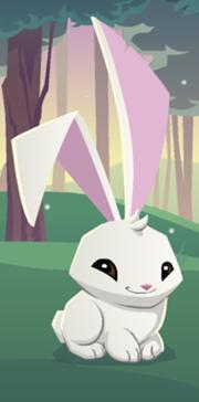 File:MxcpMxcp180px-Bunny.png