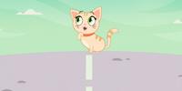 Kitten/Gallery