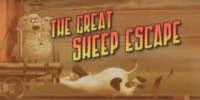 The Great Sheep Escape/Transcript