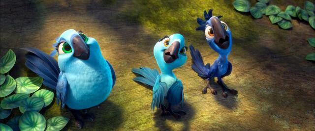 File:Carla, Bia and Tiago.jpg