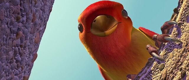 File:The Bird.jpg