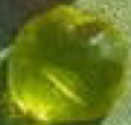 File:Yellow Dino Gem.jpg