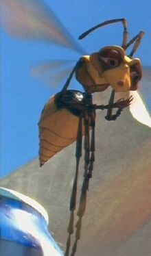 Muffin the Wasp
