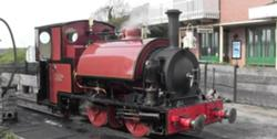 File:Sir Haydn.jpg