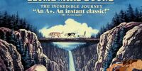 Pooh's Adventures of Homeward Bound: The Incredible Journey