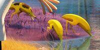 Bananostriches