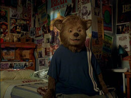 Country bears in03sm
