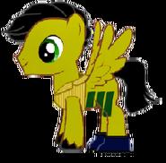 Scruff pony