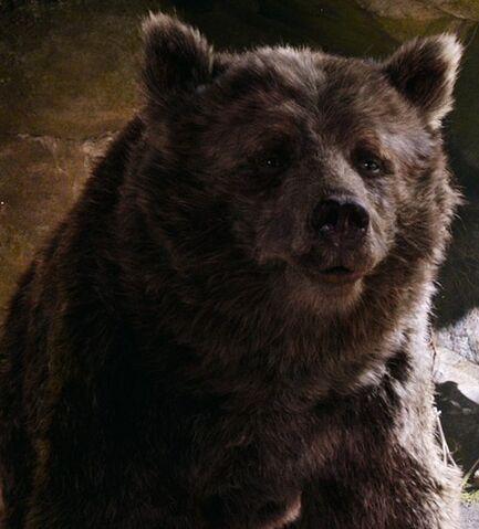 File:Baloo (Live Action).jpeg