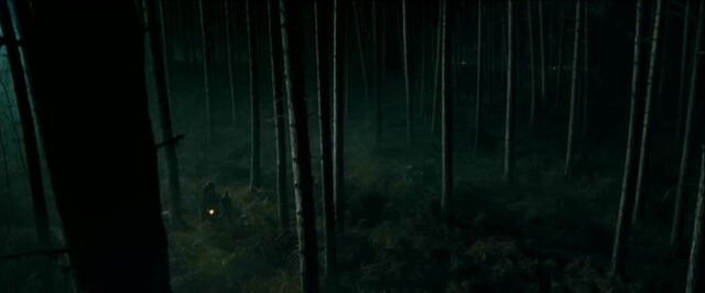 File:The Forbidden Forest.jpg