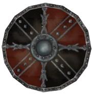 Practice Shield