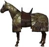 Aqs horse2