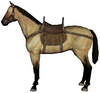Steppe horse maw