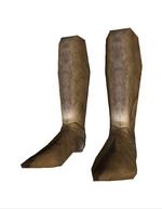 Aqs boots2