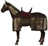 Aqs horse4