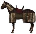 Aqs horse4.png