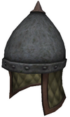 Steppe helmetG