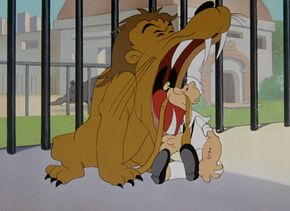 Popeye-lion