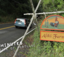Aliki Farms