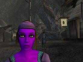 Purple Kat