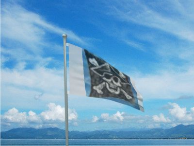 File:Pirate Flag.jpg