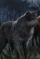 Lupin-werewolf.png