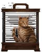 Ginger-cat-lrg