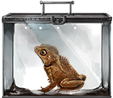 File:Crested-toad-lrg.png