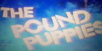 Pound Puppies:The 1985 TV Special