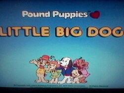 Little Big Dog