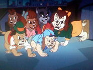 Brainwashed Pound Puppies 2