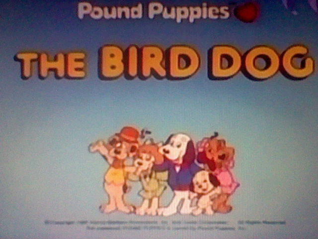 File:Title Screen for The Bird Dog.jpg