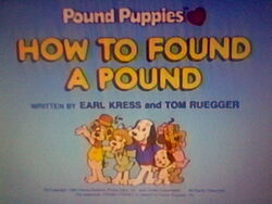 Title Screen for How to Found a Pound