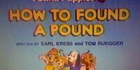 Episode 2: How to Found a Pound