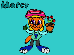 New Marcy
