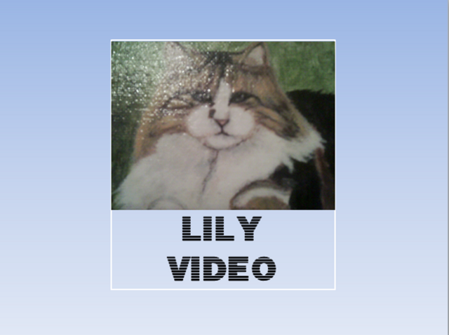 File:Lily vid.png