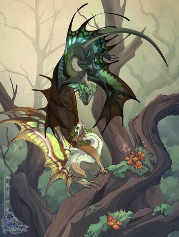 File:Fairy dragons.jpg