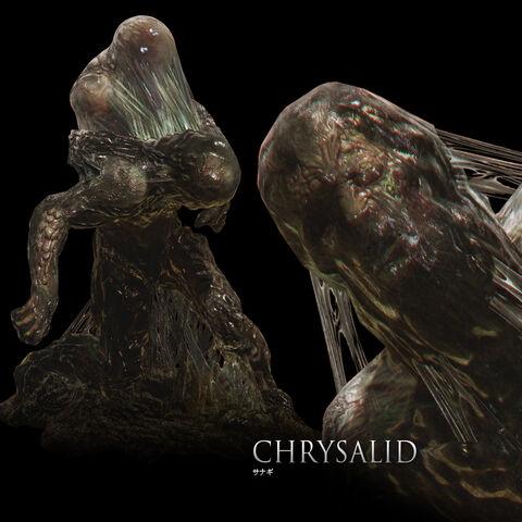 File:Chrysalid.jpg