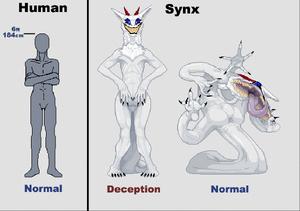 Synx22222