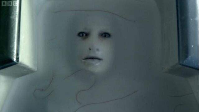 File:The Flesh face.jpg