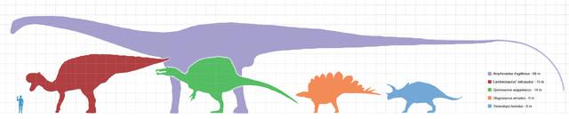 File:Largestdinosaursbysuborder scale.png