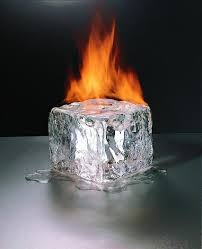 File:Fire aversion.jpg
