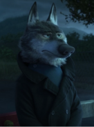 Larry Wolf Blue Eyes