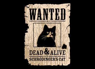 File:Schrodingerscat Poster.jpg