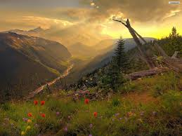 File:A peace of paradise.jpg